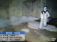 茂名消毒杀菌  茂名白蚁防治