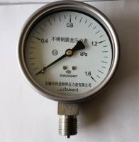 不锈钢膜盒压力表YE-60 YE100 YE150-B